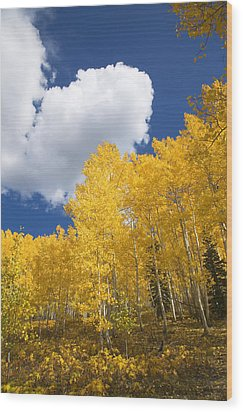 Aspens And Sky Wood Print by Ron Dahlquist - Printscapes