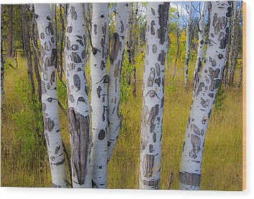 Wood Print featuring the photograph Aspens by Gary Lengyel