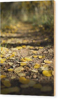 Aspen Leaves On Trail Wood Print