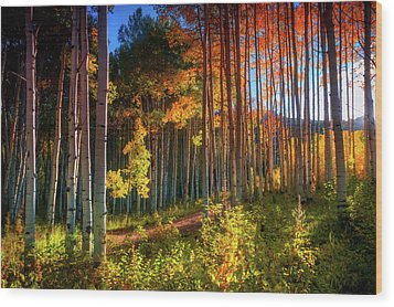Wood Print featuring the photograph Aspens Of The West Elk Mountains by John De Bord