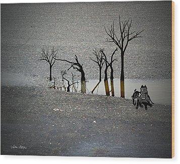 Asphalt Oasis Wood Print by Sabine Stetson