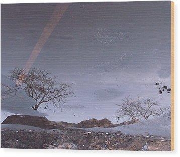 Asphalt Reflection I Wood Print by Anna Villarreal Garbis