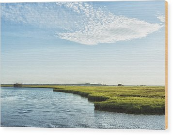 Assateague Island Wood Print