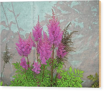 Wood Print featuring the photograph Astilbe And Shadows by Randy Rosenberger