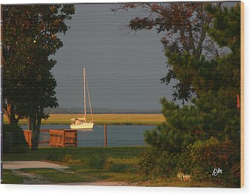 Wood Print featuring the photograph At Anchor by Phil Mancuso