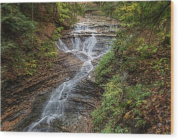 Wood Print featuring the photograph At Bridal Veil Falls by Dale Kincaid