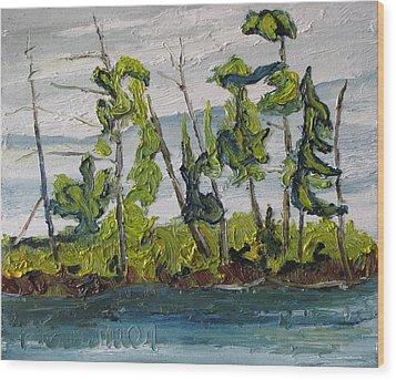 At Burbue Lake No 2 Wood Print by Francois Fournier