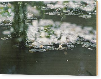 Wood Print featuring the photograph At Claude Monet's Water Garden 5 by Dubi Roman