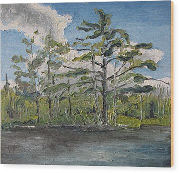 At Islands Lake No1 Wood Print by Francois Fournier