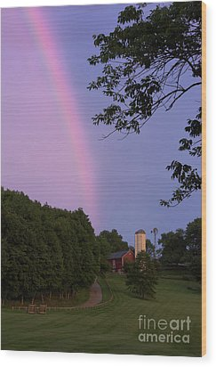 At The End Of The Rainbow Wood Print by Nicki McManus