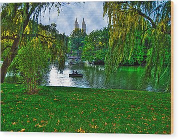 At The Lake In Central Park Wood Print by Randy Aveille