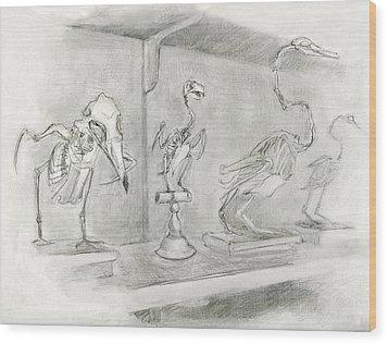 Bird Skeletons Wood Print