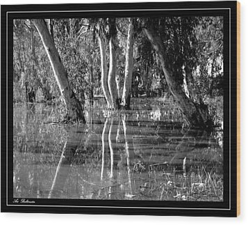 Wood Print featuring the photograph At The Swamp 2 by Arik Baltinester