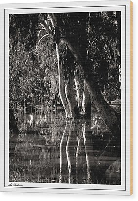 Wood Print featuring the photograph At The Swamp by Arik Baltinester