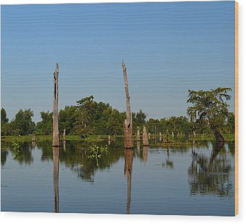 Atchafalaya Basin 18 Wood Print by Maggy Marsh