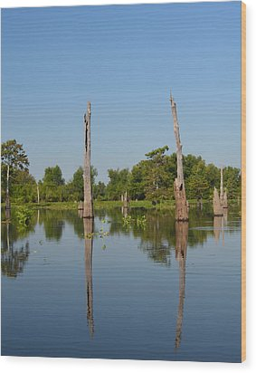 Atchafalaya Basin 19 Wood Print by Maggy Marsh