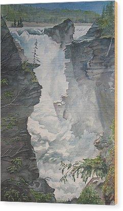 Athabasca Falls Alberta Wood Print by Debbie Homewood