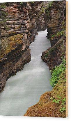 Athabasca Falls  Wood Print