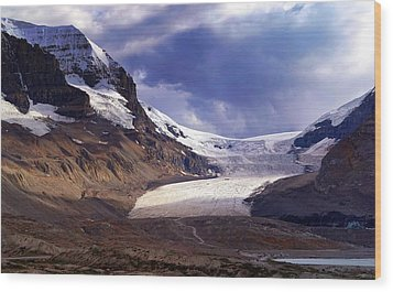 Athabasca Glacier Wood Print by Heather Vopni