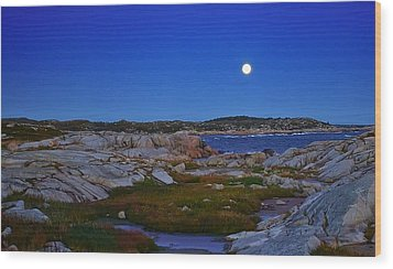 Atlantic Moon  Wood Print by Heather Vopni