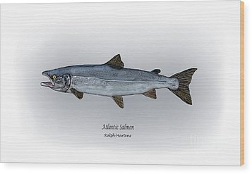 Atlantic Salmon Wood Print by Ralph Martens