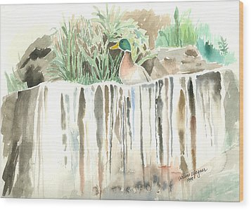 Atop The Waterfall Wood Print by Arline Wagner