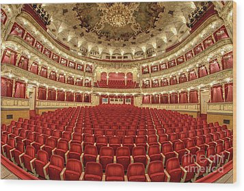 Wood Print featuring the photograph Auditorium Of The Great Theatre - Opera by Michal Boubin