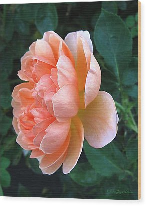 Wood Print featuring the photograph August Rose 09 by Joyce Dickens