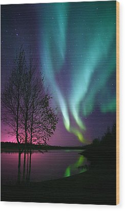 Aurora Display Wood Print