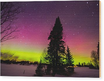 Aurora With Spruce Tree Wood Print