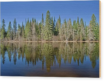 Wood Print featuring the photograph Ausable Reflections 1768 by Michael Peychich