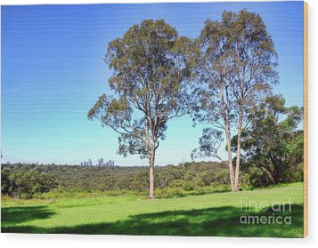 Wood Print featuring the photograph Aussie Gum Tree Landscape By Kaye Menner by Kaye Menner