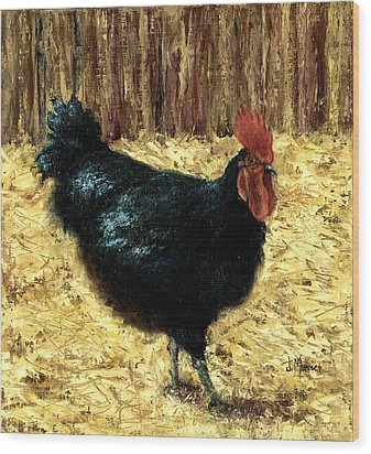 Australorp Rooster Wood Print by Jill Musser