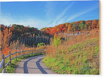 Wood Print featuring the photograph Autumn Hiking Trail by Charline Xia