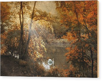 Wood Print featuring the photograph Autumn Afterglow by Jessica Jenney