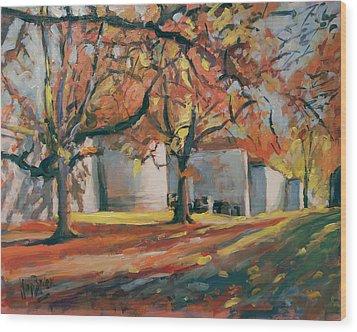 Autumn Along Maastricht City Wall Wood Print by Nop Briex