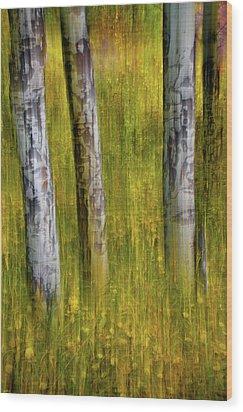 Wood Print featuring the photograph Autumn Aspen Recollections by John De Bord