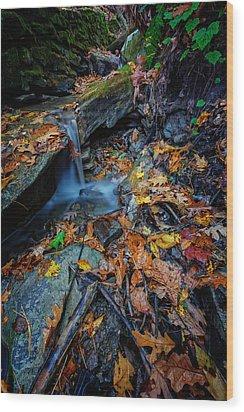 Autumn At A Mountain Stream Wood Print by Rick Berk