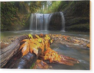 Autumn At Hidden Falls Wood Print by David Gn
