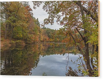 Autumn At Hillside Pond Wood Print by Brian MacLean
