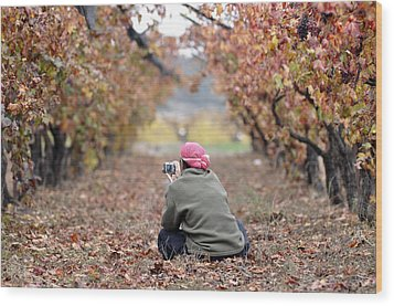 Wood Print featuring the photograph Autumn At Lachish Vineyards 1 by Dubi Roman