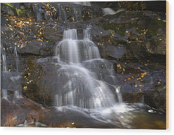 Autumn At Laurel Falls Wood Print by Darrell Young