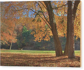 Wood Print featuring the photograph Autumn At Lykens Glen by Lori Deiter