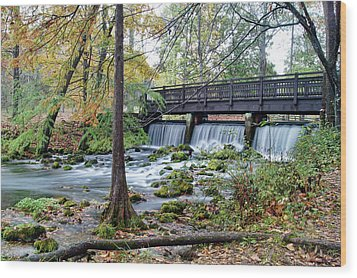 Wood Print featuring the photograph Autumn At Maramec Spring by Cricket Hackmann