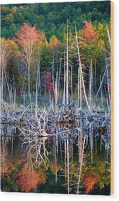 Autumn At Moosehead Bog Wood Print