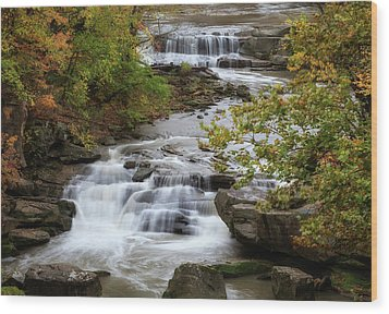 Wood Print featuring the photograph Autumn At The Falls by Dale Kincaid