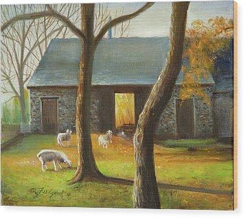 Autumn At The Sheep Barn Wood Print by Oz Freedgood