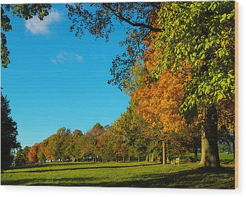 Autumn At World's End Wood Print
