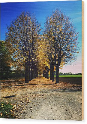 Autumn Avenue Wood Print by Niki Mastromonaco