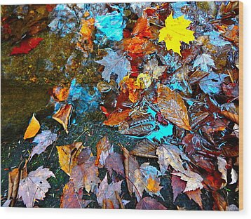 Autumn B 2015 124 Wood Print by George Ramos